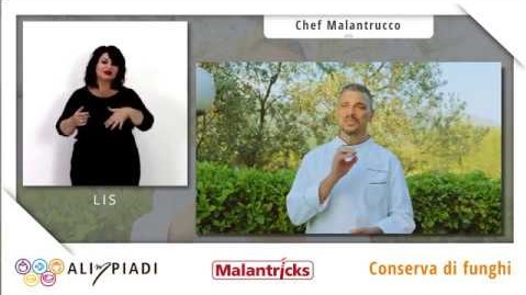 LIS - Conserva di funghi - Malantricks - Alimpiadi
