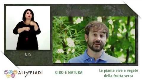 LIS - Le piante vive e vegete della frutta secca - Cibo e natura - Alimpiadi