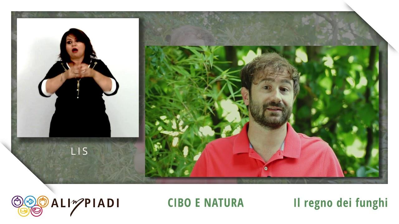 LIS - Il regno dei funghi - Cibo e natura - Alimpiadi