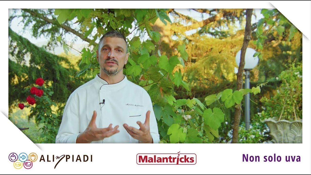 Le foglie di vite - Malantricks - Alimpiadi